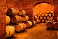 bodega-vino